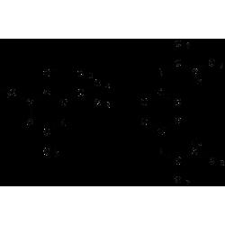 Антиоксиданти