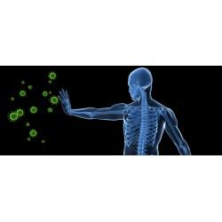 Имунна система