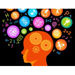 Памет и концентрация